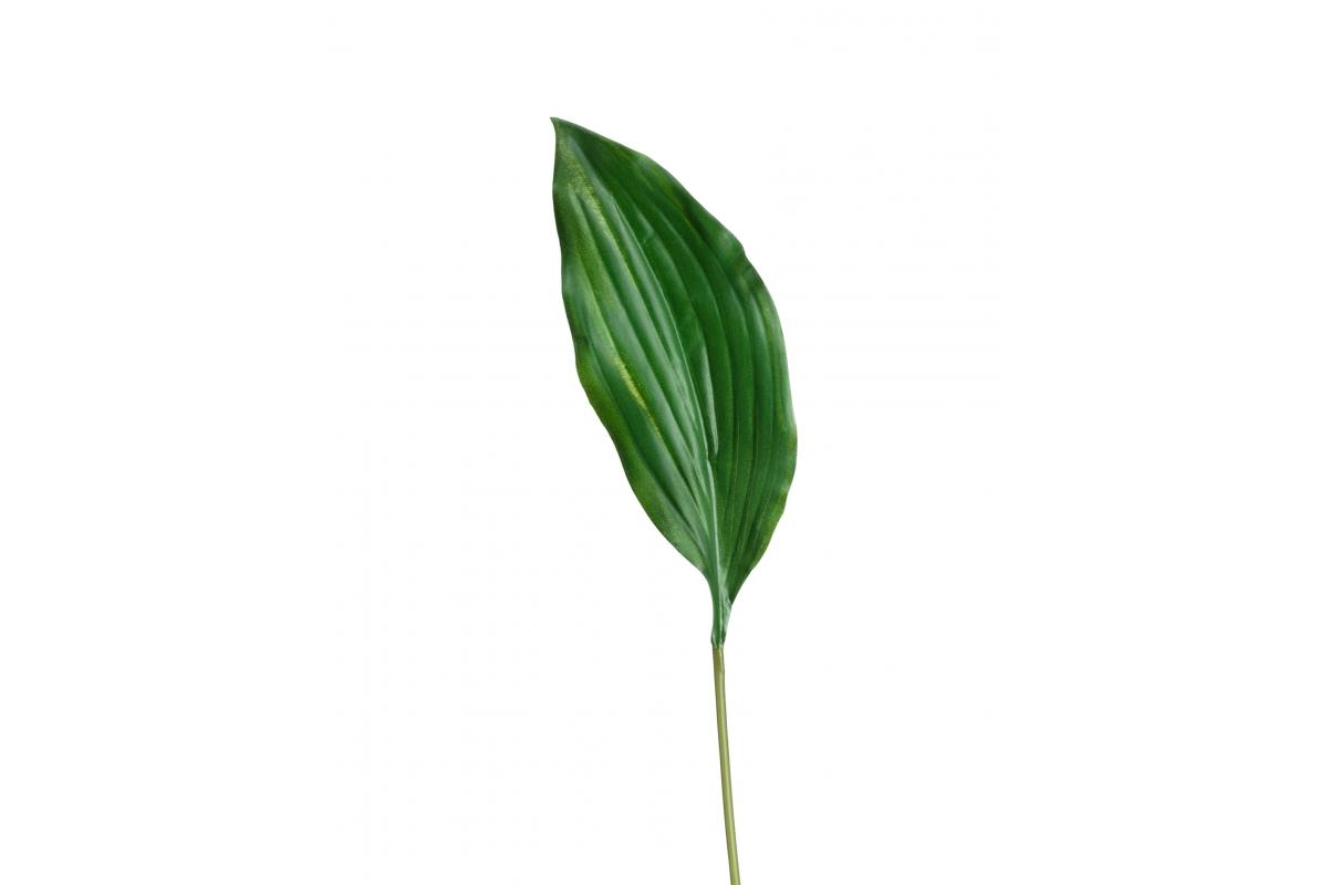 Лист Хосты искусственный-темно-зеленый