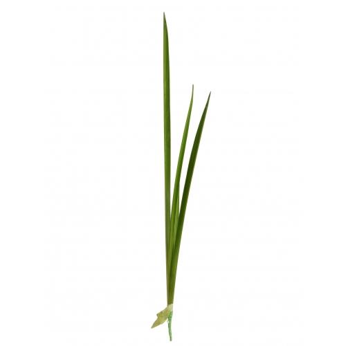 Листы Тиффы искусственные зеленый 75 см
