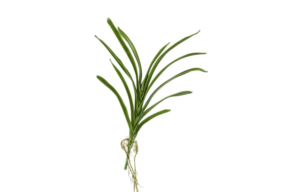 Листья орхидеи Ванды искусственные с корнями зеленые 40 см