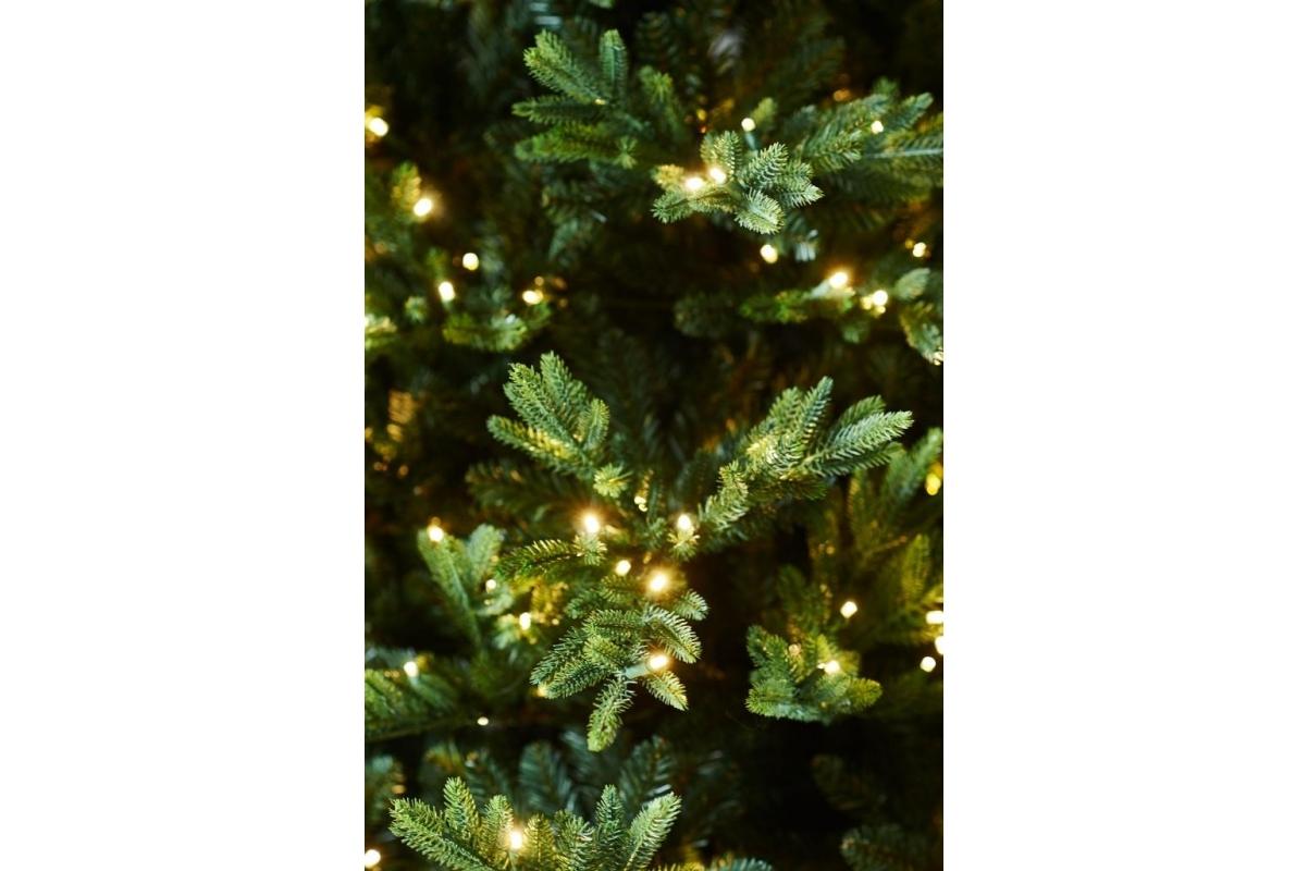 Ель WHISTLER LED зеленая искусственная с LED лампочками 180 см - Фото 2