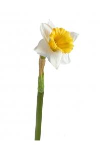 Нарцисс искусственный бело-желтый 48 см