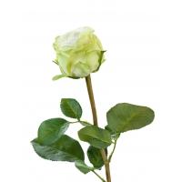 Роза Эспернаса Мидл искусственная бело-зеленая 49 см