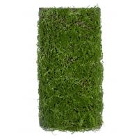 Мох Микс Рясковый Сфагнум искусственный зеленый 50 x 100 см (полотно)