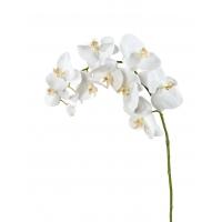 Орхидея Фаленопсис искусственная белая 100 см (Real Touch)