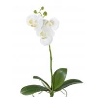 Орхидея Фаленопсис искусственная мини белая куст с корнями 42 см (Real Touch)