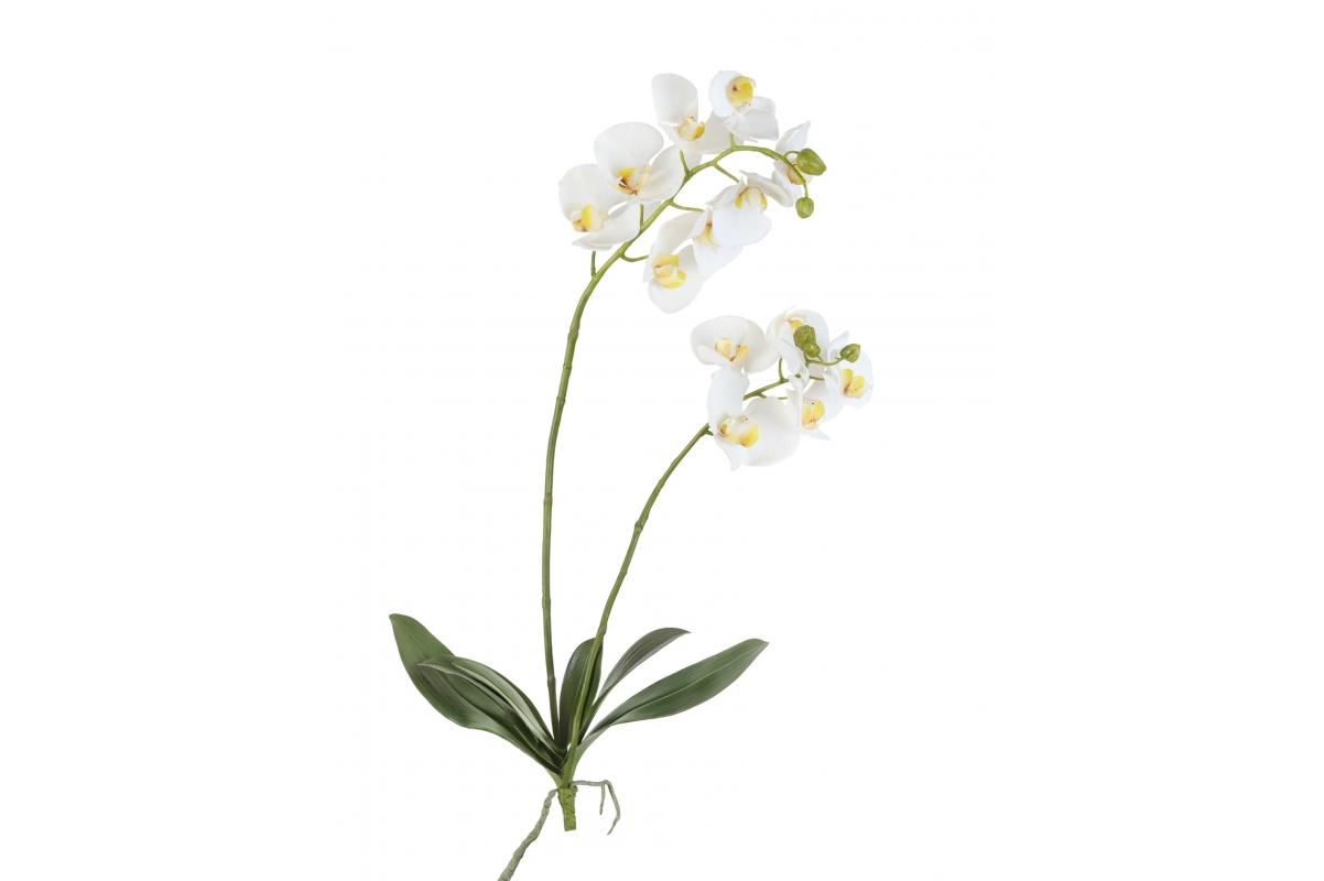 Орхидея Фаленопсис искусственная белая куст с корнями 82 см (Real Touch)