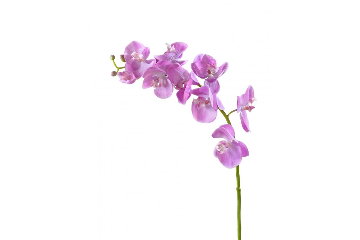 Орхидея Фаленопсис Мидл искусственная розово-белая 76 см (Real Touch)
