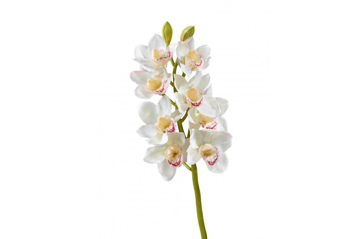 Орхидея Цимбидиум искусственная белая ветвь средняя 67 см (Real Touch)