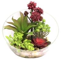 Композиция из Суккулентов Мини-садик искусственная красно-зеленая в стеклянной вазе 25 см
