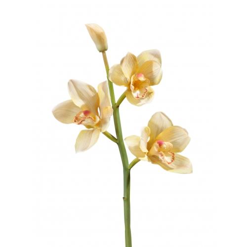 Орхидея Цимбидиум искусственная ветвь нежно золотистая малая 50 см (Real Touch)