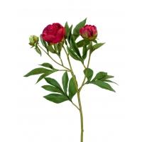 Пион искусственный красно-бордовый ветвь 60 см