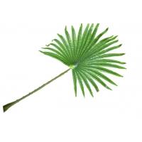 Лист искусственный пальмы Вашингтония веерный 60*90 см