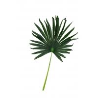 Лист искусственной пальмы Ливистона веерный 50*82 см