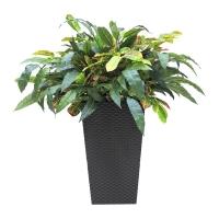Зелень искусственная в высоком кашпо 80 см