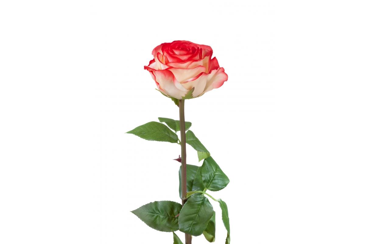 Роза Соло Нью большая искусственная кремовая с розовым 72 см