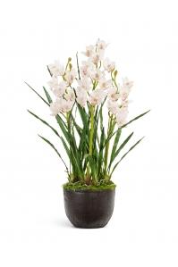 Орхидея Цимбидиум куст 3 ветки искусственный с имитацией земли 115 см Real Touch (без кашпо)
