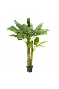 Пальма Банановая искусственная 210 см (Real Touch)