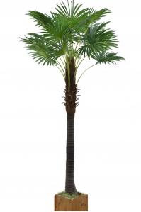 Пальма Вашингтония искусственная без кашпо 280 см
