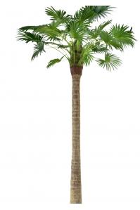 Пальма Вашингтония искусственная разборная без кашпо 350 см