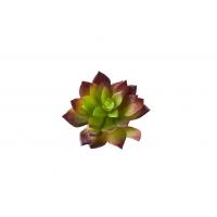 Суккулент искусственный зелено-красный 10 см Real Touch