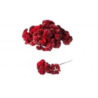 Суккулент Седум малый искусственный красный 21 см (Real Touch)