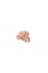 Суккулент Седум малый искусственный розовый 21 см (Real Touch)