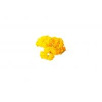 Суккулент Седум малый искусственный желтый 21 см (Real Touch)