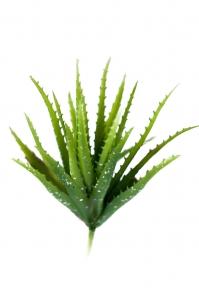 Куст Алоэ искусственный зеленый 27 см (Real Touch)