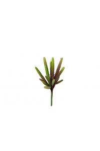 Суккулент Стапелия искусственный зелено-красный 28 см (Real Touch)