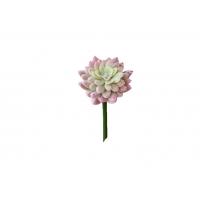 Суккулент Звезда искусственный припыленно-розовый 20 см (Real Touch)