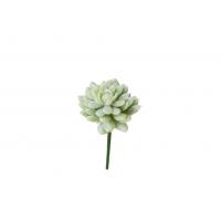 Суккулент Звезда искусственный припыленно-зеленый 20 см (Real Touch)
