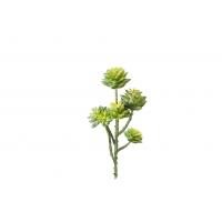 Суккулент Цветочная Ветка искусственный зеленый 32 см (Real Touch)