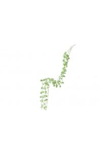 Суккулент Нитки Жемчуга припыленно-зеленый 78 см (Real Touch)