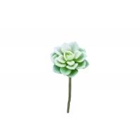 Суккулент Эхеверия Лау искусственный зеленый 14 см