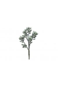 Суккулент Крассула Роджерса искусственный зеленый 25 см (Real Touch)