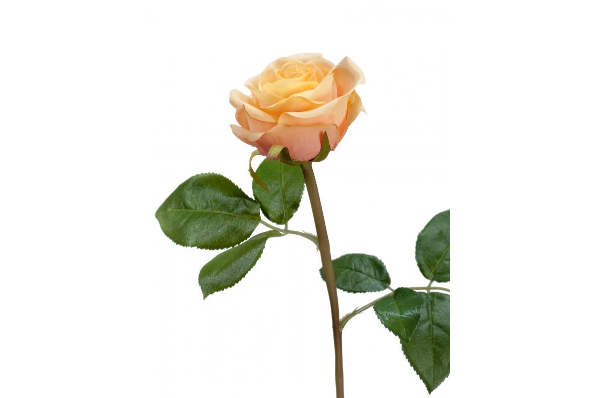 Роза Флорибунда Мидл искусственная кремово-персиковая 34 см