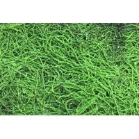 Мох искусственный зеленый из веточек 50 x 90 см