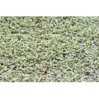Полотно Мох-ряска с мелкими листьями искусственный на резиновой основе 200 x 100 см