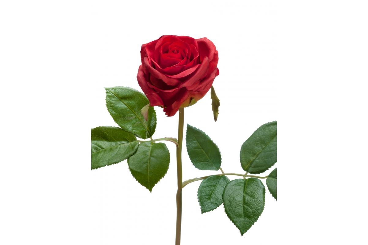 Роза Флорибунда Мидл искусственная красная-бордовая 34 см