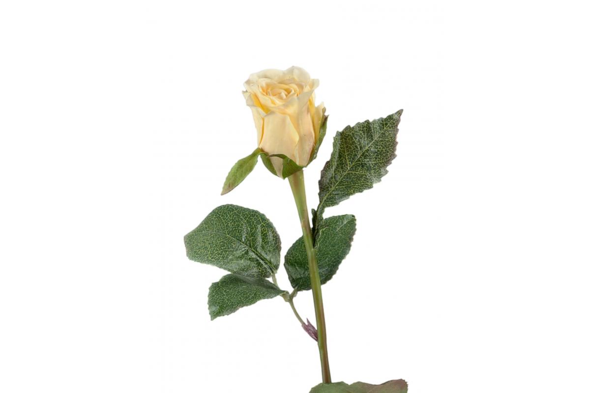 Роза Анабель искусственная бледно желто-розовая 52 см