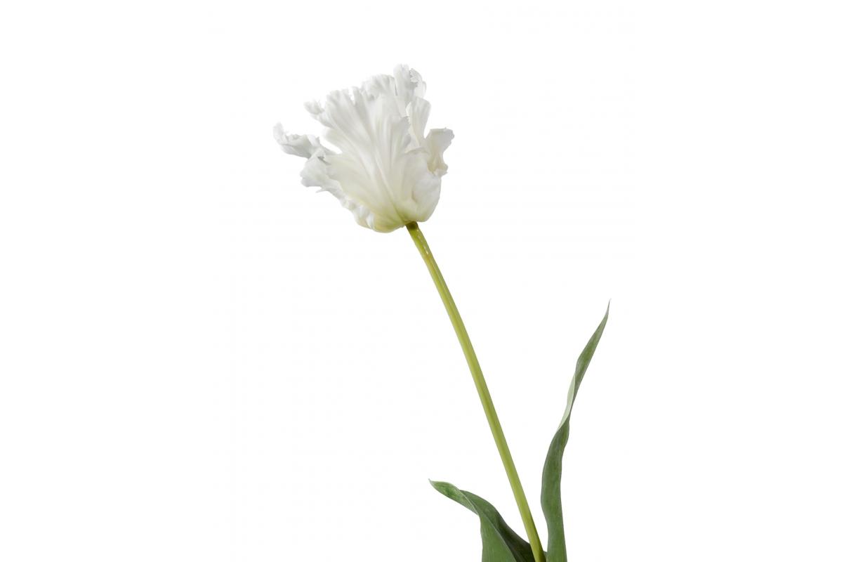 Тюльпан Попугай Искусственный белый 80 см