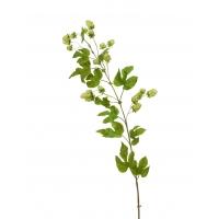 Хмель ветка искусственный светло-зеленая 120 см