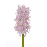 Гиацинт искусственный розовый 30 см
