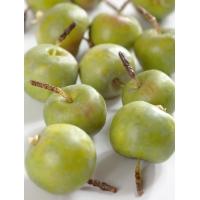 Яблочки Мини искусственные зеленые в коробке 10 штук