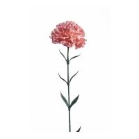 Гвоздика искусственная розовая 65 см