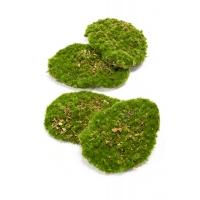 Мох искусственный лесной зеленый (в наборе 4 шт)