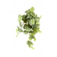 Сциндапсус Пиктус искусственный зелено-белый 45 см (real touch)