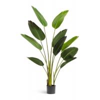 Стрелиция Style искусственная зеленая 150 см