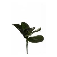 Листья Орхидеи Фаленопсиса искусственные темно-зеленые 25 см