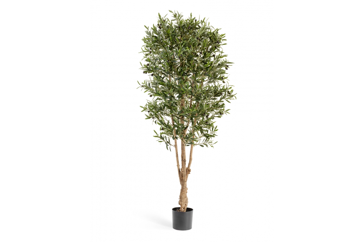 Олива Форест искусственная с плодами 180 см